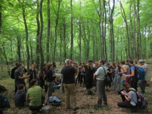 Roztochya BR - UNESCO Beech Forest WHS component part (© HNEE / A. Dichte)
