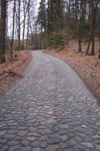 Feldsteinpflasterweg bei Senftenhütte BR Schorfheide-Chorin © J.Peters