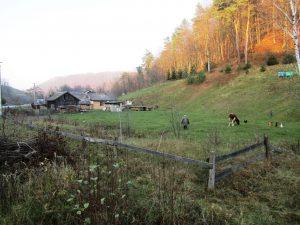 Roztochya-BR, Small Carpathians, © J. Kloiber