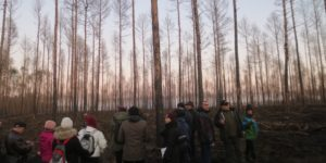 Teilnehmer*innen der Trainingswoche besichtigen abgebrannte Waldflächen, Treuenbrietzen, © A.-Dichte